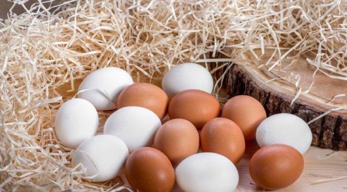 Yumurta Büyüsü Ne İçin ve Nasıl Yapılır?